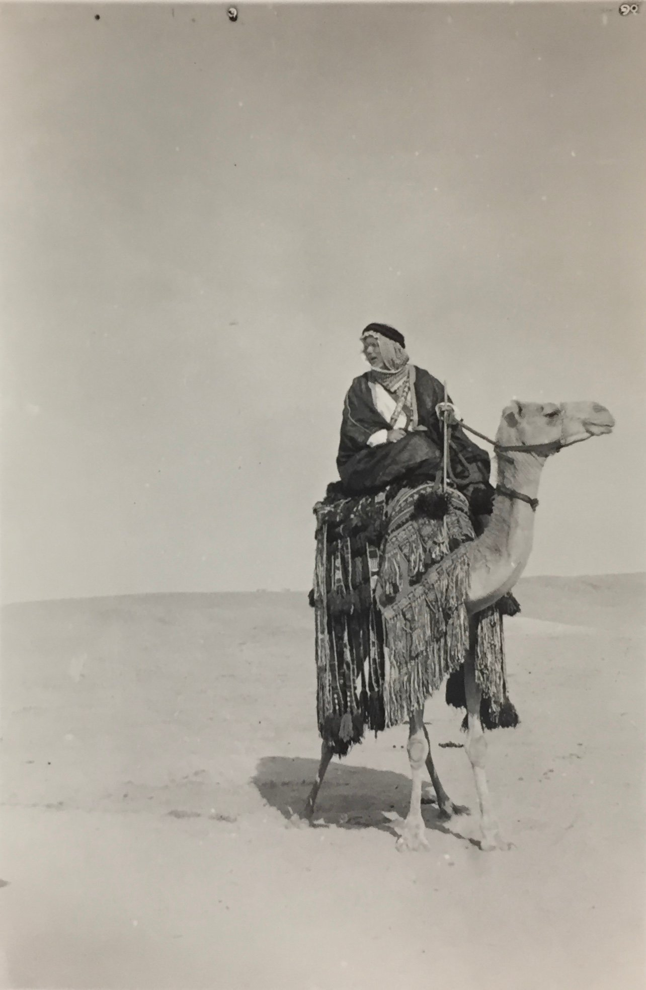 Haji Mohammed Husein-el-Mahdi (1891-1972), a.k.a. Arthur Neervoort van de Poll, a Dutch-Saudi convert to Islam, on camelback. Small photo taken around 1930, in a collection of former Dutch consul and envoy in Jeddah, C. Adriaanse, in the Dutch national archives, where unidentified. Reproduction by Aarnout Helb in 2017 for Greenbox Museum - Heritage section. Original source citation: Nationaal Archief, Den Haag, Collectie 406 Adriaanse, 1886-1985, nummer toegang 2.21.205.01, inventarisnummer 109.